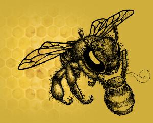 Colectivo La Colmena (BeehiveCollective)